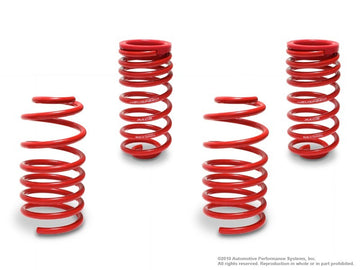 NEUSPEED Race Springs Kit