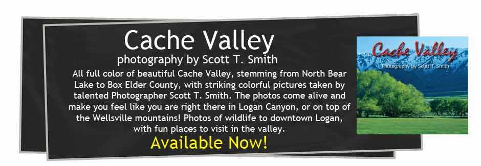 Cache Valley Photography
