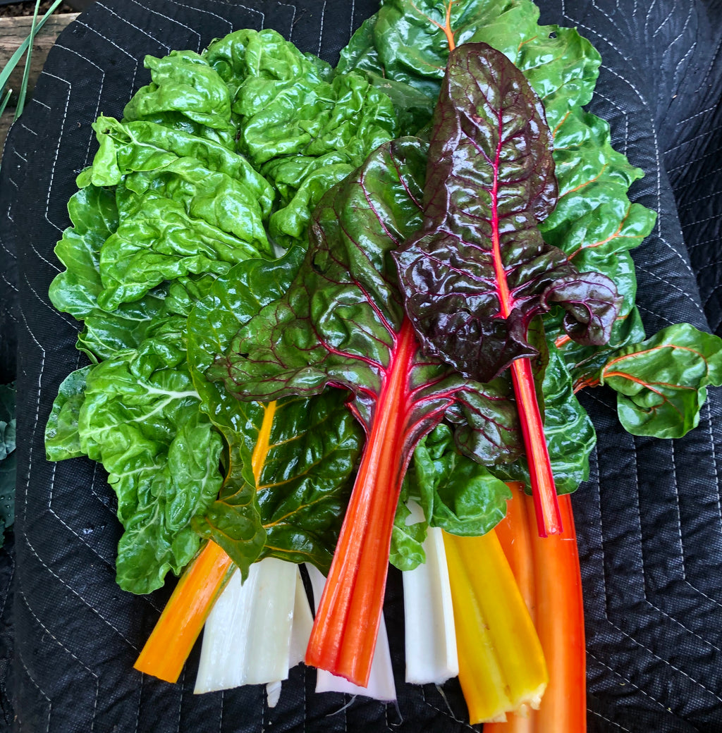 Medium Farm CSA Box