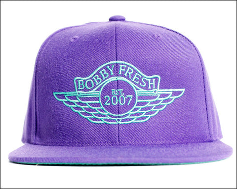 The Wings Purple/Teal Stitched Snapback