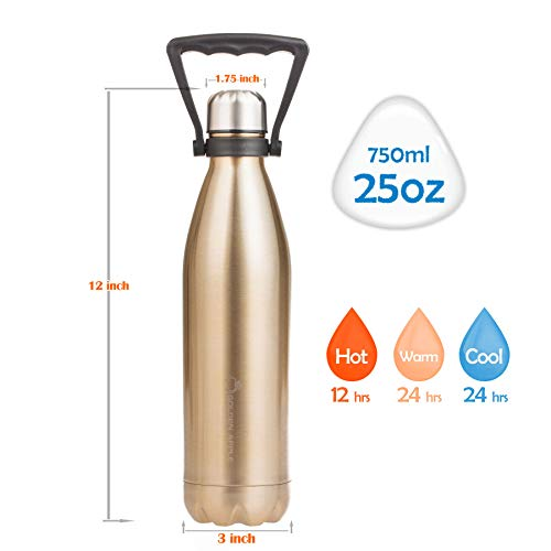 Golden Apple, 25Oz(750Ml) Simple Modern Wave Water Bottle | Double Wall  Vacuum Insulated Stainless Steel Water Bottle With Handle| Keeps Drinks Hot