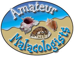 Door Sign in Color: Amateur Malacologists