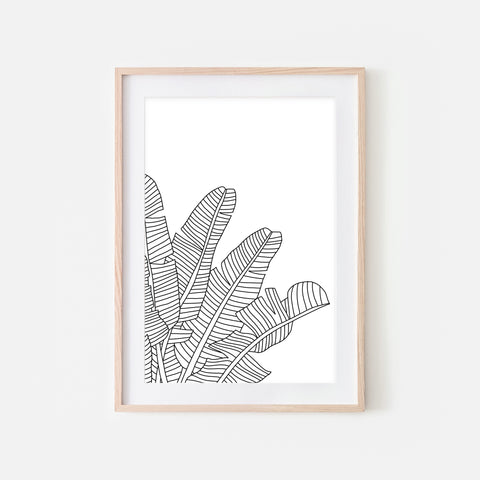 Botanical No. 19 Line Art - Minimalist Banana Leaf Drawing - Tropical Beach Wall Decor - Black and White Print, Poster or Printable Download