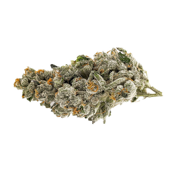 Msiku White Wedding Dried Flower 3.5g
