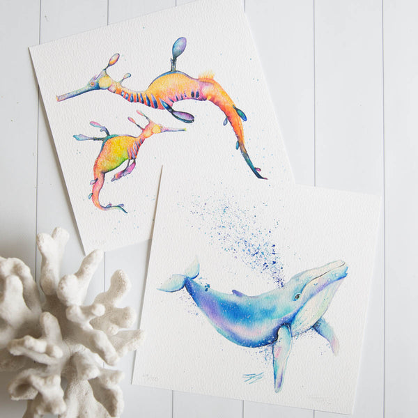 Watercolour animals artwork sealife collection, whale and leafy sea dragons in vibrant painting prints for wall art.