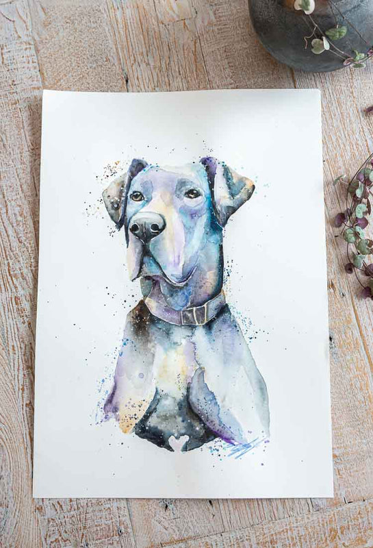 Commission Dog Portraits by Stephanie Elizabeth Artwork