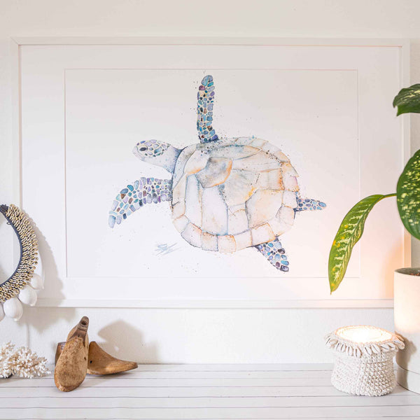 A1 Turtle Print in modern white frame