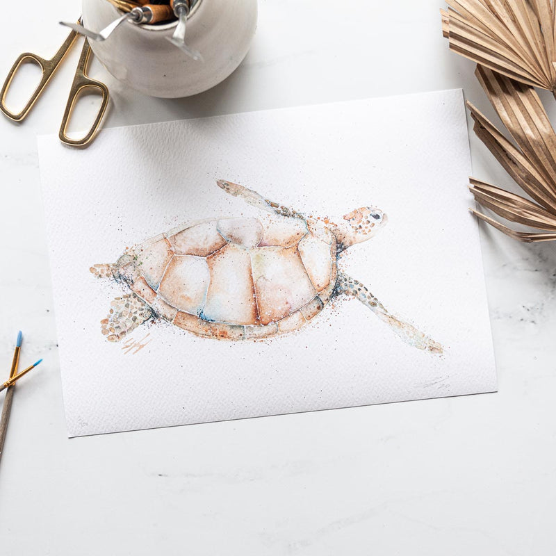 Turtle artwork print by SEA