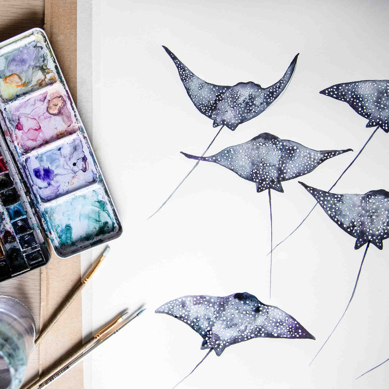 Eagle Rays for days watercolour animal artwork