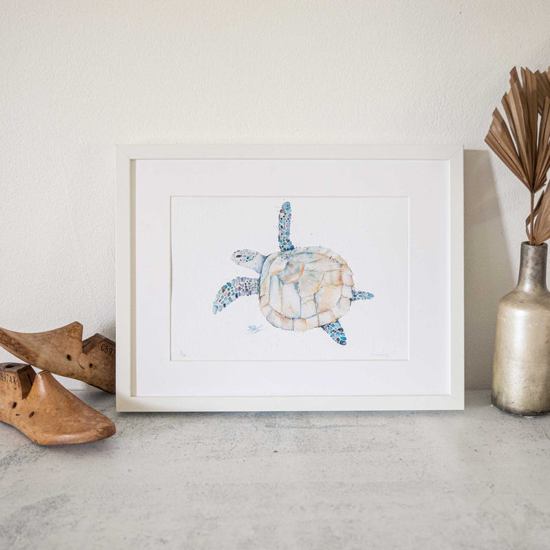 Framed Turtle watercolour animal artwork