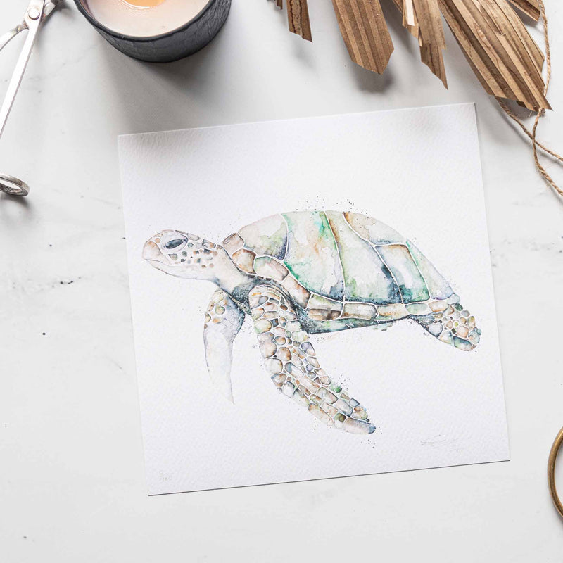 'Elliot the Turtle' - Print