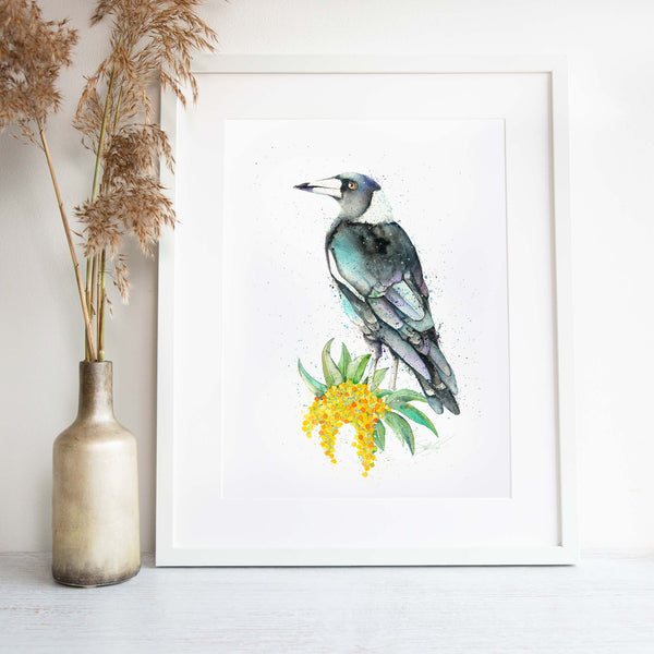 Magpie and wattle framed wall art print