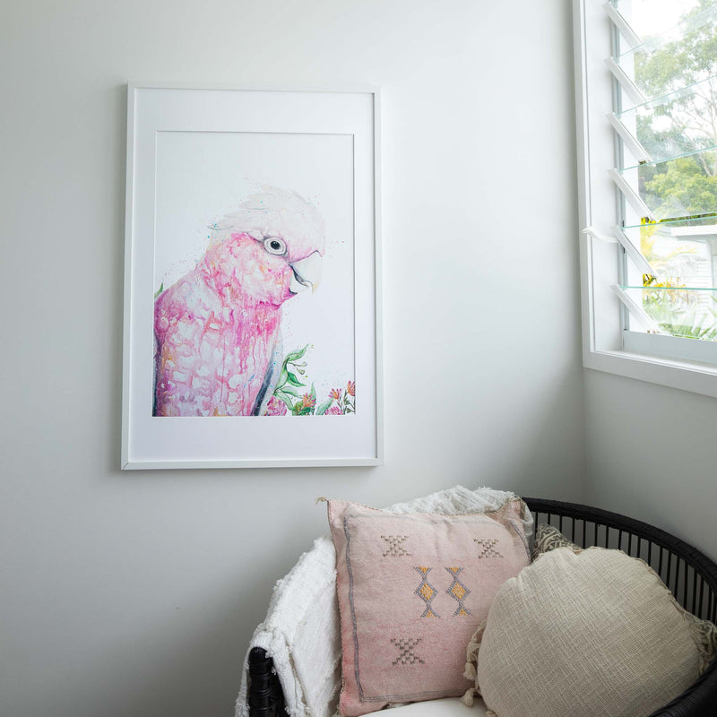 Pink Galah Watercolour animal artwork birdlife limited edition print