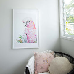 Pink Galah wall art