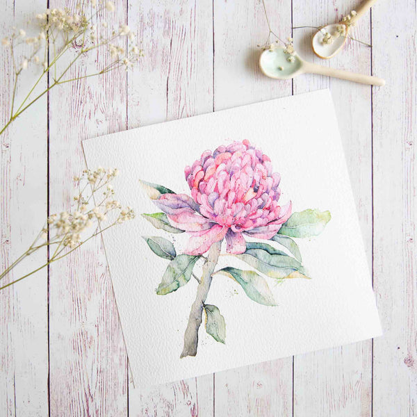 Watercolour Waratah Stephanie Elizabeth Artwork