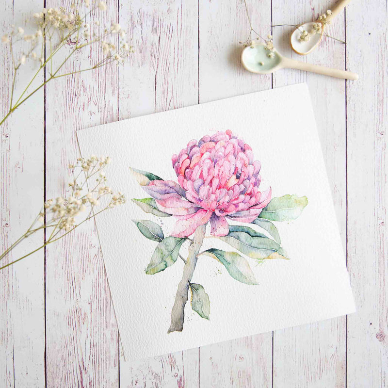 Watercolour flowers artwork Waratah print. Limited edition print of Australian native flower.