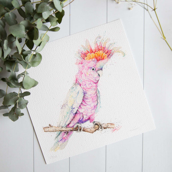 Watercolour animals artwork pink major mitchell galah