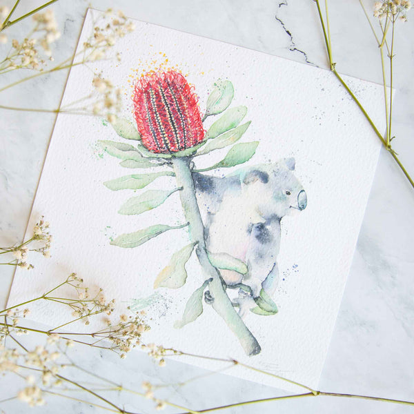 Koala and Banksia Native flowers print