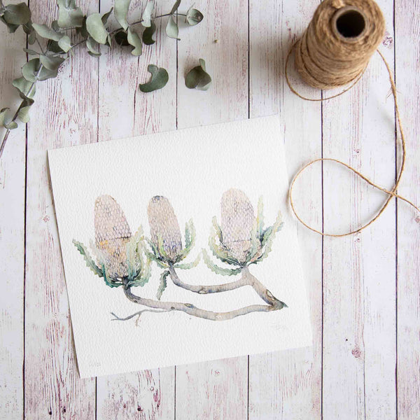 Watercolour native flowers banksias print