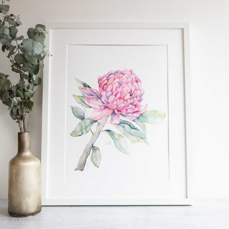 Wall art Australian native flowers. Watercolour flowers artwork by Stephanie Elizabeth Artwork.