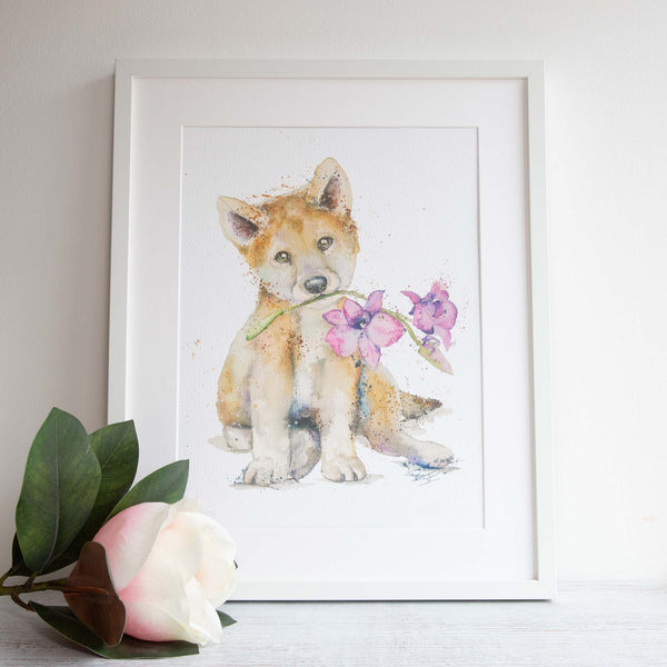 Framed Dingo watercolour artwork