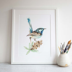 Framed fairy wren and banksia print