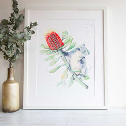 Watercolour animals artwork Koala and Banksia Australian native animals and flowers.