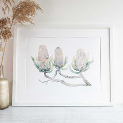 Australian native flowers banksias artwork