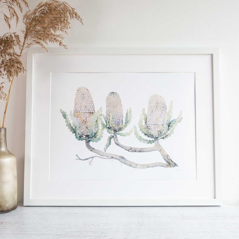 Prickly line up framed print by Stephanie Elizabeth Artwork