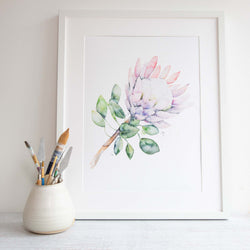 Watercolour flowers artwork Protea native Australian flora design by Stephanie Elizabeth Artwork.
