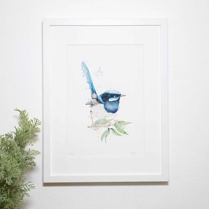 Something Blue fairy wren framed print by SEA