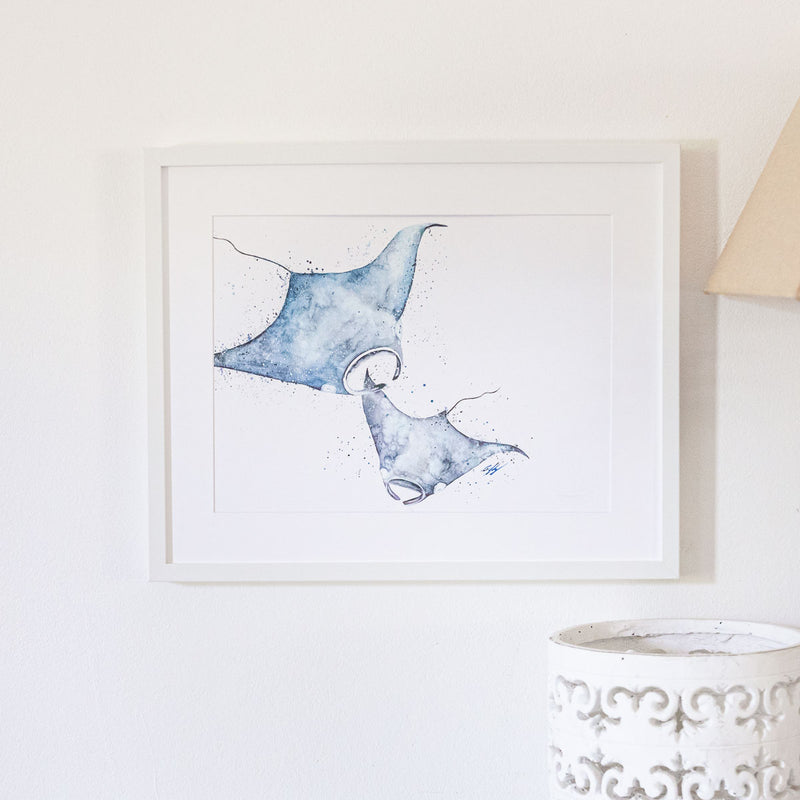 Framed manta ray watercolour print