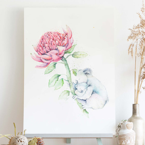 watercolour animals artwork koalas and waratah