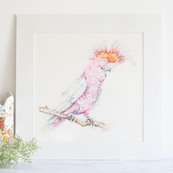Watercolour animals artwork major mitchell pink galah