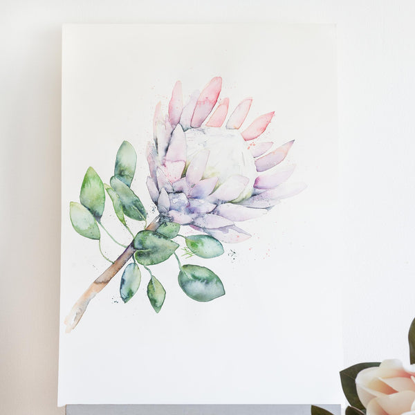 watercolour native Australian flowers protea painting