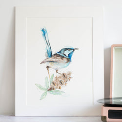 Fairy Wren and Banksia Original watercolour artwork