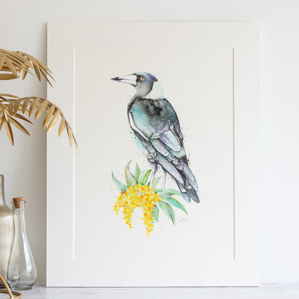Watercolour animals artwork magpie and wattle painting