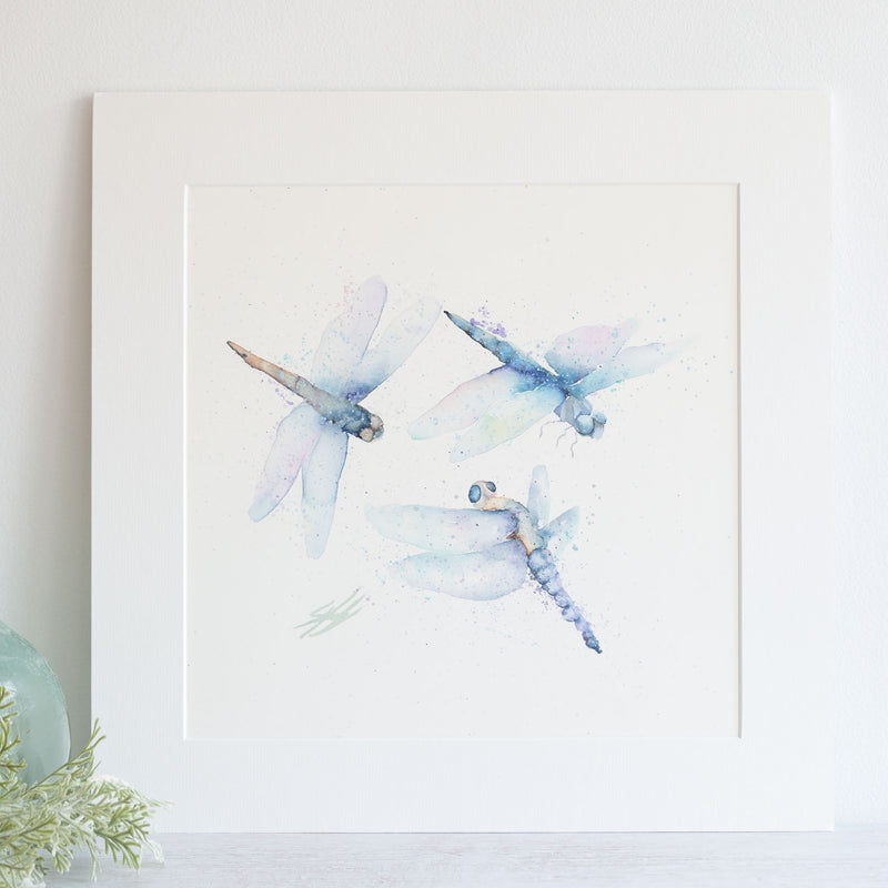 watercolour animals artwork dragonflies original painting