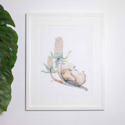 Sleepy wombat framed print by stephanie elizabeth artwork