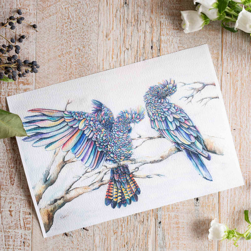 Watercolour animals artwork black cockatoos print