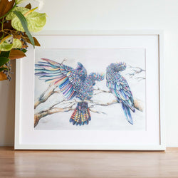 Black Cockatoos watercolour wall art