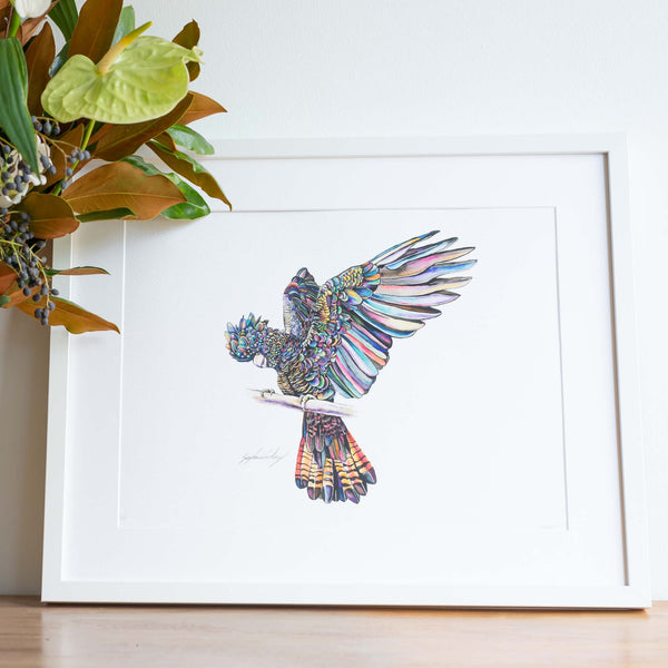 All a flutter black cockatoo wall art print