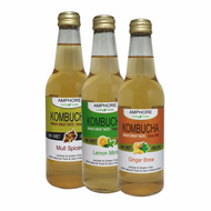 BLENDED KOMBUCHA 330ml (Digestion, Detox & Recovery)