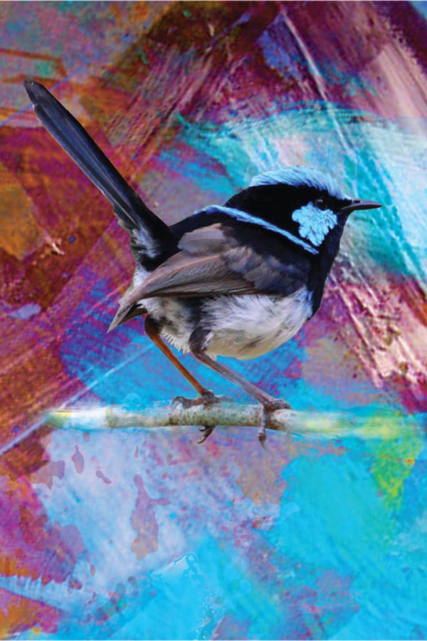 BLUE WREN MICROFIBRE TEA TOWEL