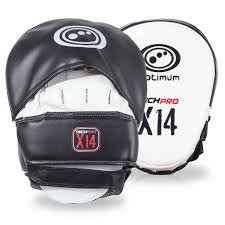 X14 Hook and Jab Focus Mitts