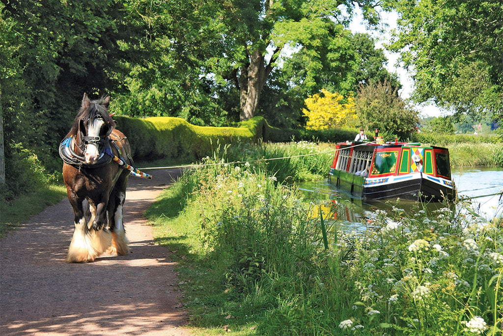 Grand Western Canal Family Cycle Route for Bike Rides