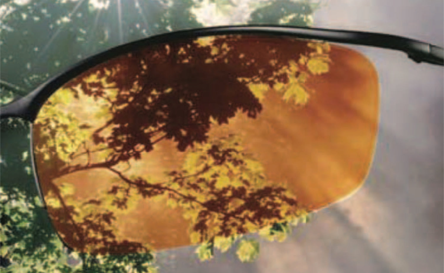 Transitions DriveWear Lenses Outdoors: Bright Light