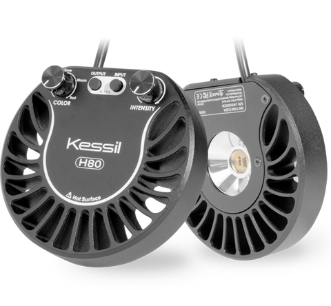 Kessil - H80 Tuna Flora Grow Light - Wais Aquarium