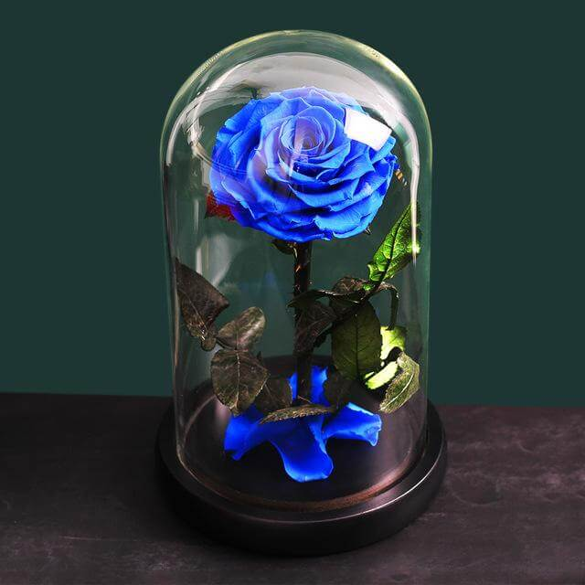 Preserved Rose In Glass - Madeofrose