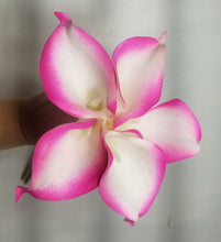 Load image into Gallery viewer, Fuchsia Calla Lily